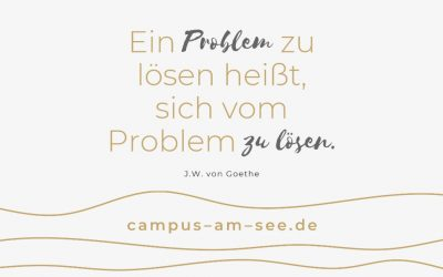 Sind Probleme problematisch?